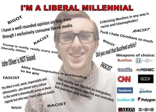 liberal millenial